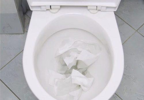 Bồn cầu bị nghẹt giấy